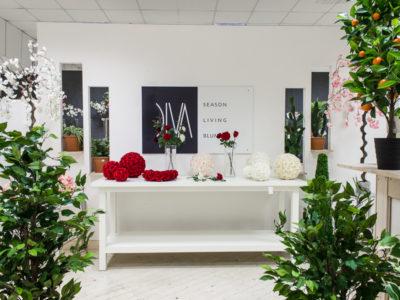 Diva2018 088 400x300 Showroom