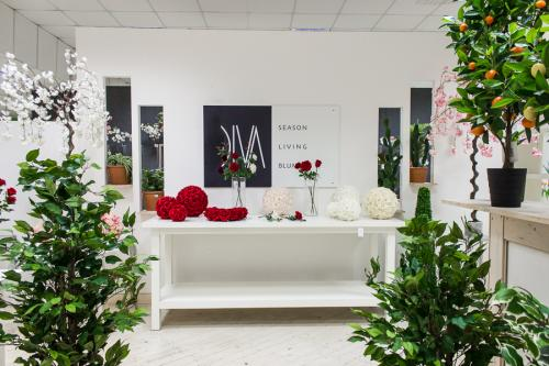 Diva2018 088 copia Showroom